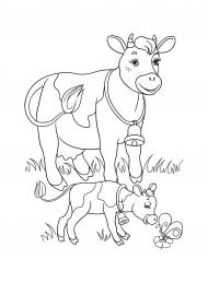 Корова и теленок. Раскраска