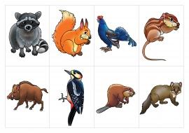 Картинки диких животных весной для детского сада