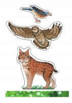Животные для макета «Лес. Дикие животные»