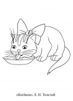 Котенок лакает молоко