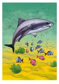 Акула. Картинка для распечатывания — скачать и распечатать ...