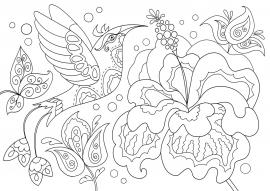 Колибри на цветке. Раскраска антистресс для детей и ...