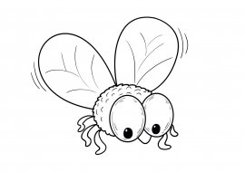 муха большая раскраска скачать и распечатать животные
