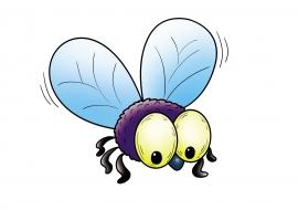 Картинка мухи — скачать и распечатать. Животные — Насекомые и ...