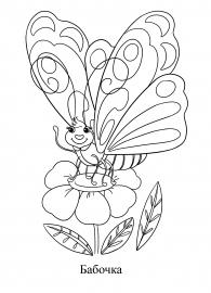 Раскраска бабочки на цветке — скачать и распечатать ...