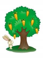 Дерево морковное. Морковь