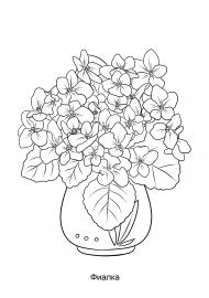 Комнатный цветок в горшке раскраска