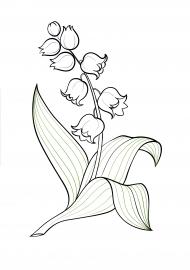 Ландыш. Раскраска — скачать и распечатать. Растения ...