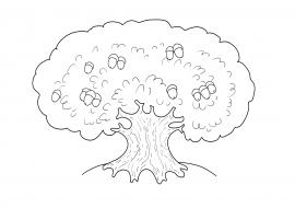 Дуб. Раскраска — скачать и распечатать. Растения — Деревья ...
