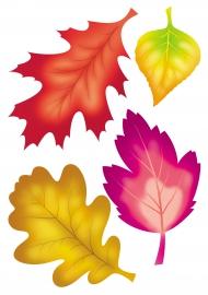 Осенние листья — скачать и распечатать. Растения — Деревья ...