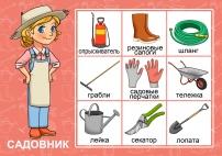 Профессии и труд