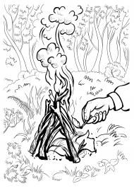 стоят раскраска берегите лес от огня слышал, что