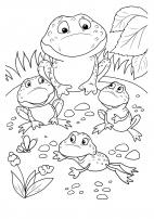 Земноводные, рептилии