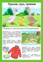Домашние птицы: гусыня, гусь, гусенок