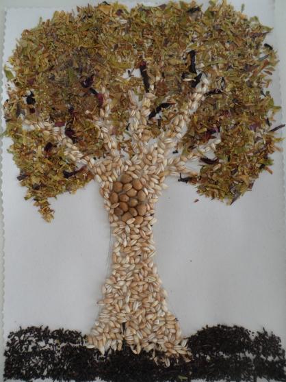 Картинки дуб осенний