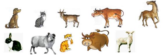 домашние животные логопедическое занятие в подготовительной группе