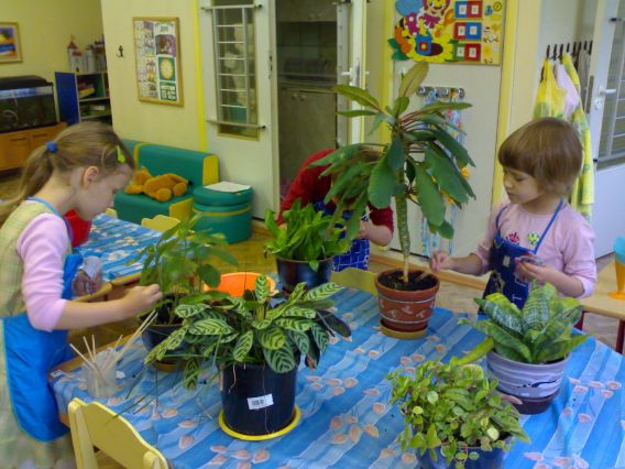 Познавательное занятие подготовительная группа тема огород сад