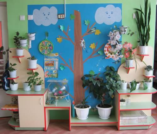 Природный уголок в детском саду своими руками