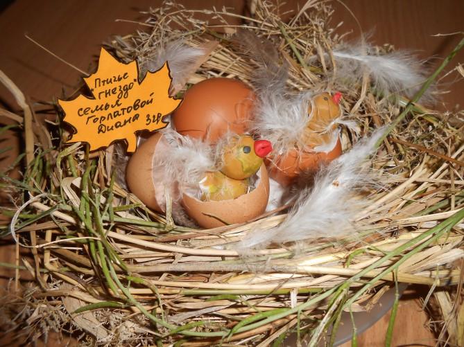 Поделки своими руками гнездо с птенцами 64