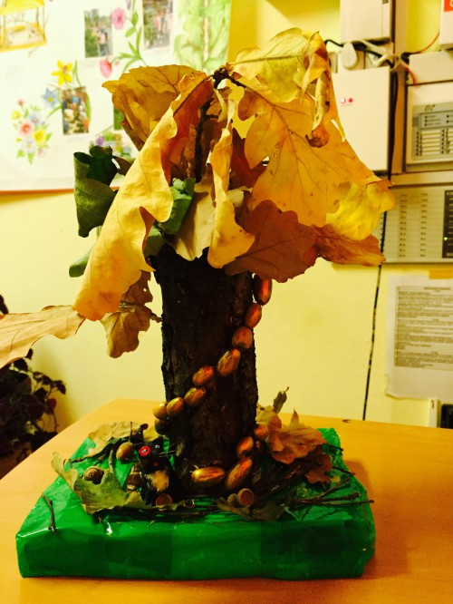 Поделки из природного материала у лукоморья дуб зеленый 6