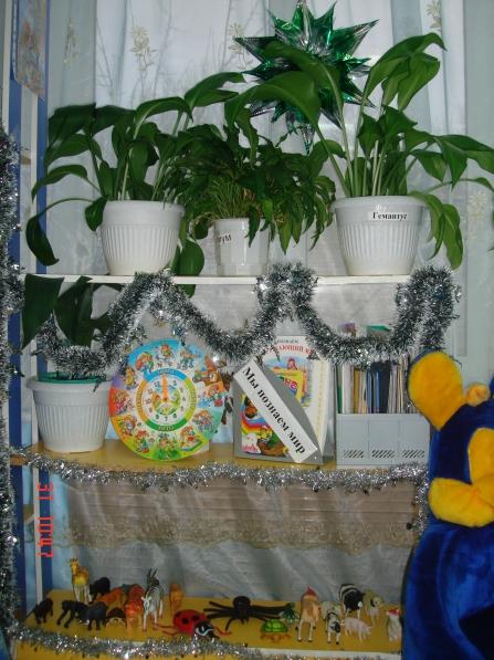 Изготовление зимнего сада в частном доме