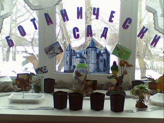 «Ботанический сад на окне в детском саду»