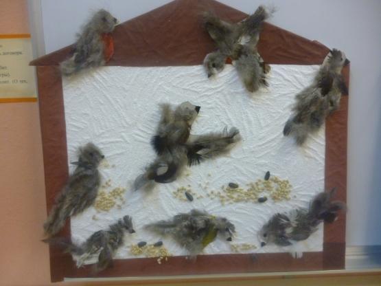 Покормите птиц зимой картинки из