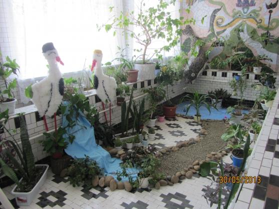 Зимний сад в доу своими руками