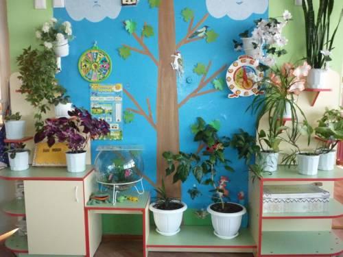 Фото уголок природы в детском саду своими руками