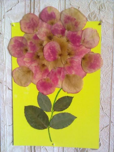 Поделки из лепестков сухих роз