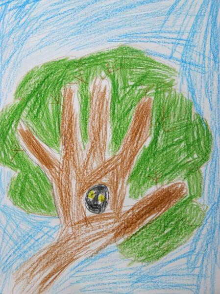 как познакомить детей в лагере с природой