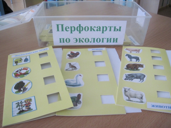 Авторское дидактическое пособие для закрепления знаний о живой природе и экологических знаках «Перфокарты по экологии»