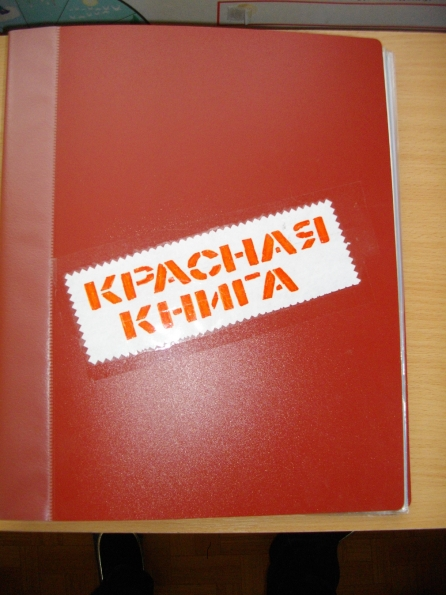 Как сделать красную книгу