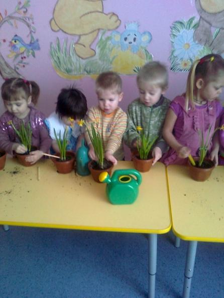 Проект вырастим цветок для мамы