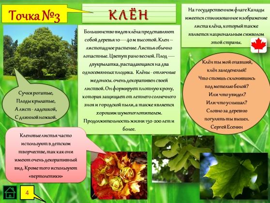 Экологическая газета в детском саду осень