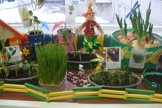 знакомство с цветами радуги в детском саду