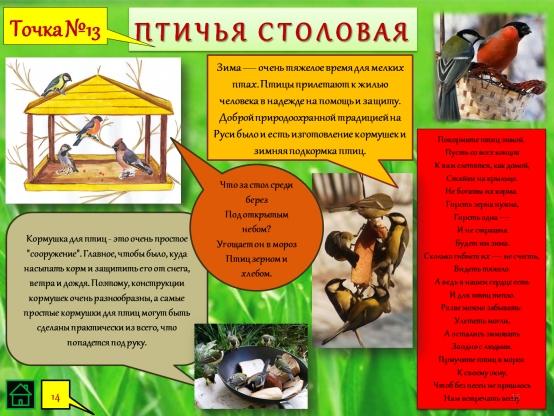 Как сделать муравейник для экологической тропы своими руками