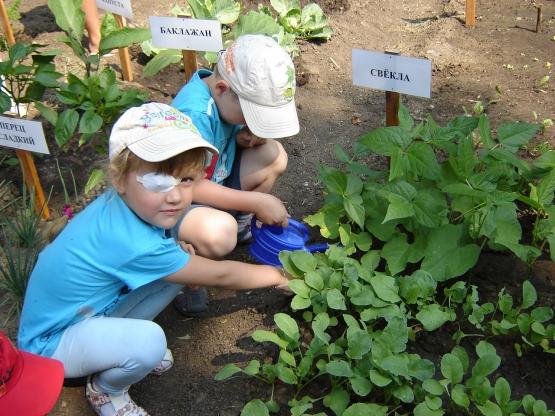 Огород в детском саду является очень приятным занятием, особенно весной, когда хочется посмотреть на цвета зелени или...