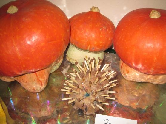 Поделка из декоративной тыквы гриба своими руками