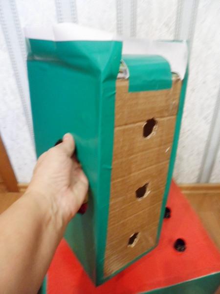 Игрушки своими руками из коробки мастер класс