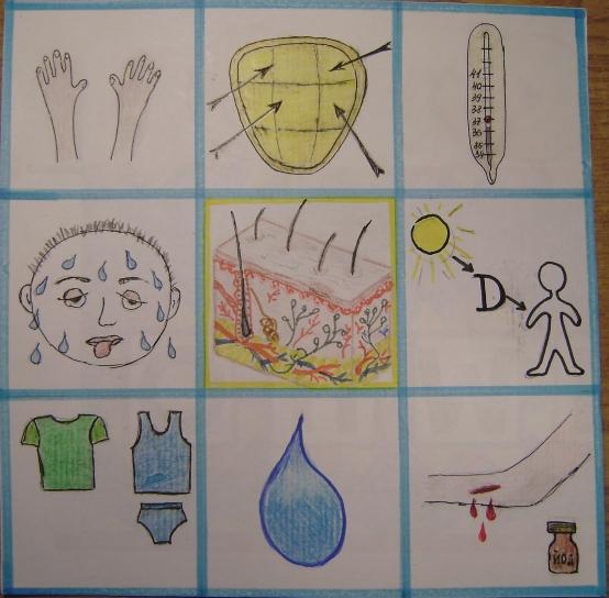 Мнемотаблицы по изучению органов чувств Воспитателям детских  Кожа защищает внутренние органы от внешних воздействий сигнализирует о заболеваниях 3 Кожа поддерживает постоянную температуру тела