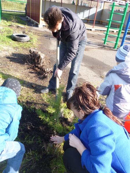 Фото посадки деревьев детьми