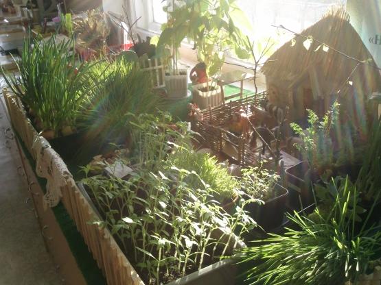 «Наш огород». Воспитателям детских садов, школьным ...: http://www.maam.ru/detskijsad/-nash-ogorod-48927.html