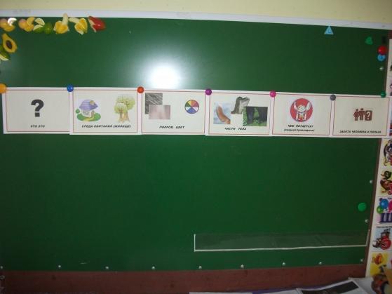 Конспект занятия по экологии «