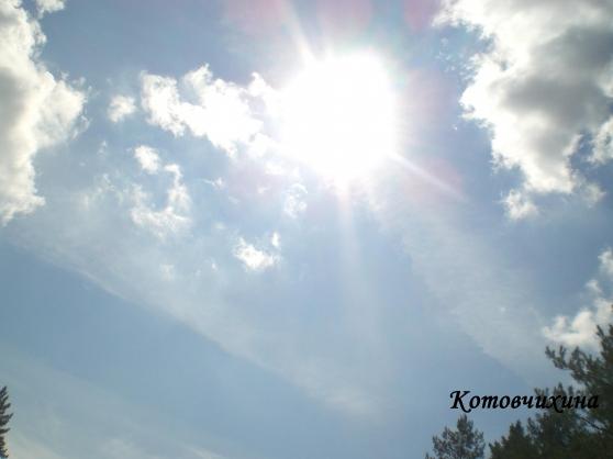 Беседа с детьми старшего дошкольного возраста: «Солнце, воздух и вода— наши верные друзья!»