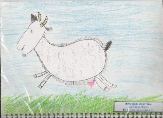 Домашние животные в рисунках детей