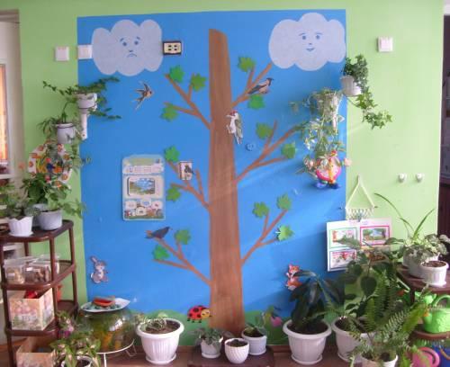Уголок природы в детском саду фото