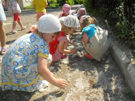 знакомство детей со свойствами дерева