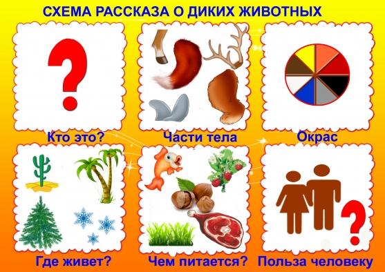 Схема рассказа о животных для дошкольников 72