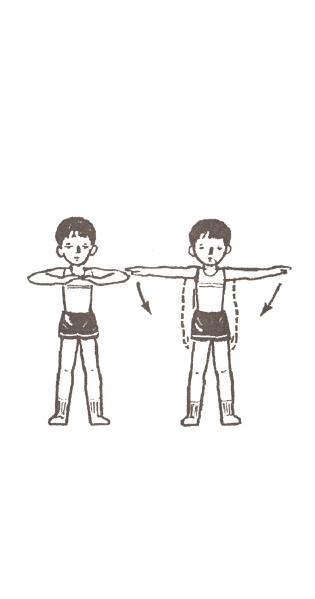 Комплекс упражнений взрослым при сколиозе